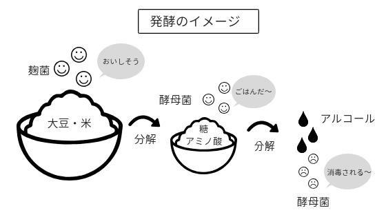 発酵のイメージ図