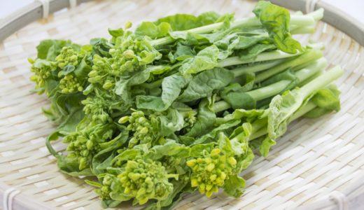 【レシピ】春のかおり まろやか塩麹を使った菜の花のキッシュ